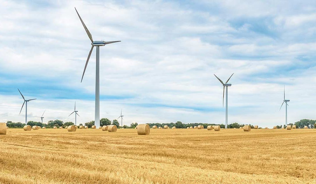 KLN-Stellungnahme zur Windenergie in Hessen: Ambitionierte Regierungsziele, hemmende Verwaltungspraxis